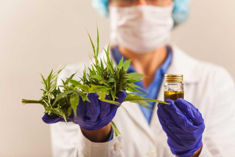 Recent Cannabis-Legal Developments