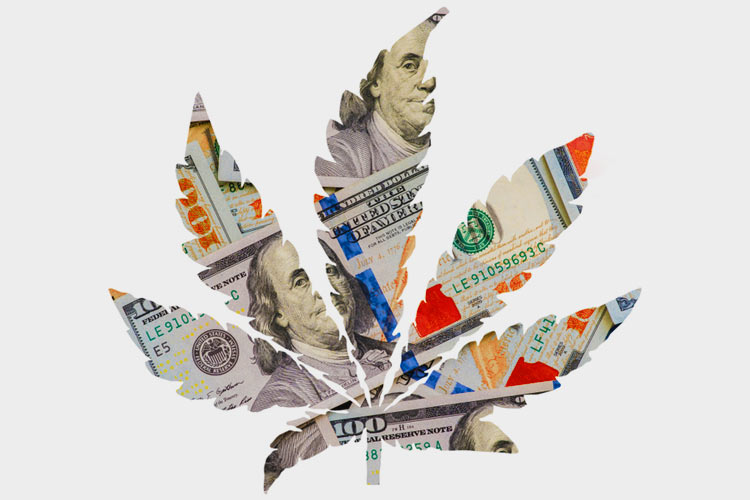 Cannabis-News-May Leaf Shaped Money