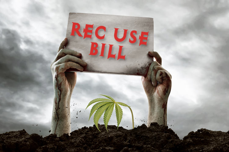 Cannabis Recreational-Bill Zombie Holding-Sign