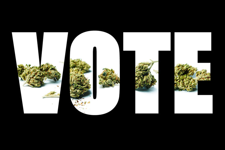 Vote-Sign-to-Legalize-Cannabis