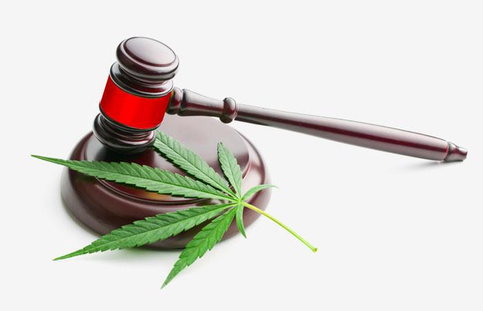 Cannabis Legal news November 2020 gavel and leaf