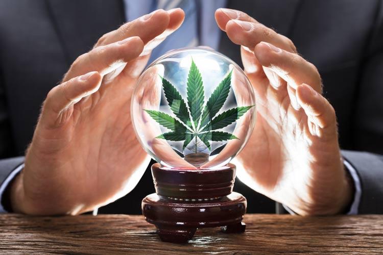 Cannabis-legal News-December-2020-Whats-Next-Crystal-Ball